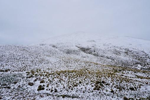 snow_LR